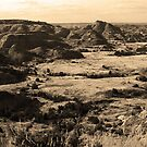 Badlands by Frank Romeo