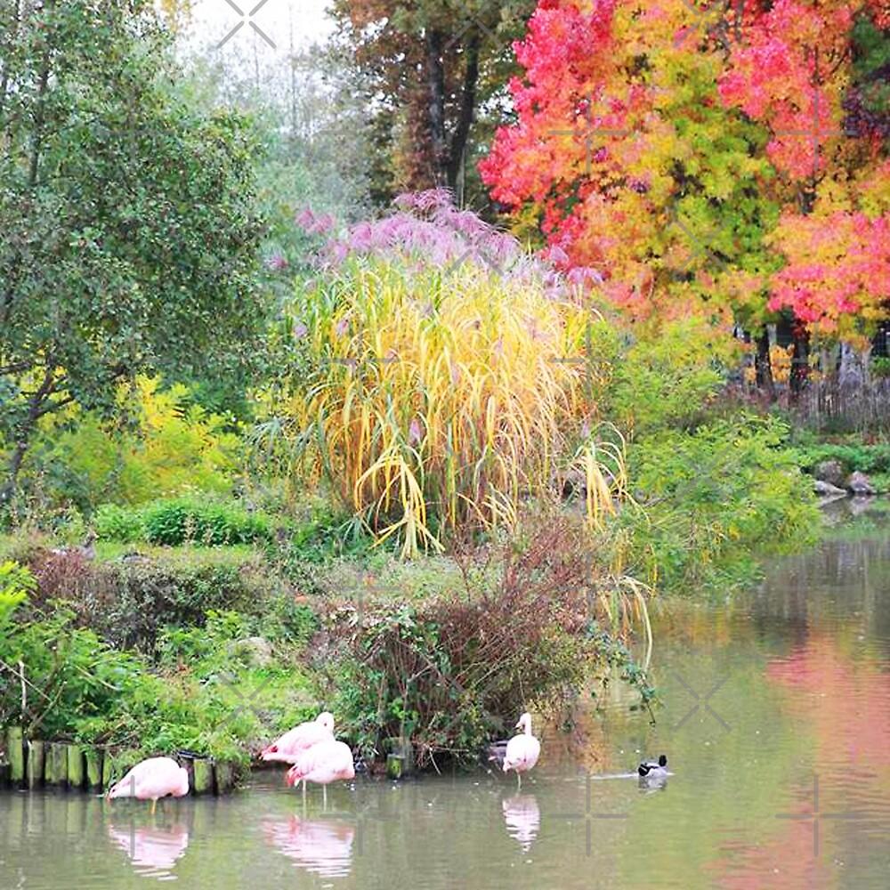 Landscape #6 - autumn colors by clad63