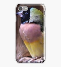 Soft Colours iPhone Case/Skin