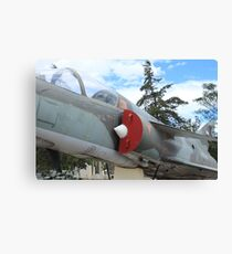 Military Jet on Display Canvas Print