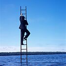 Ladder - 14 by Stephen Sheffield