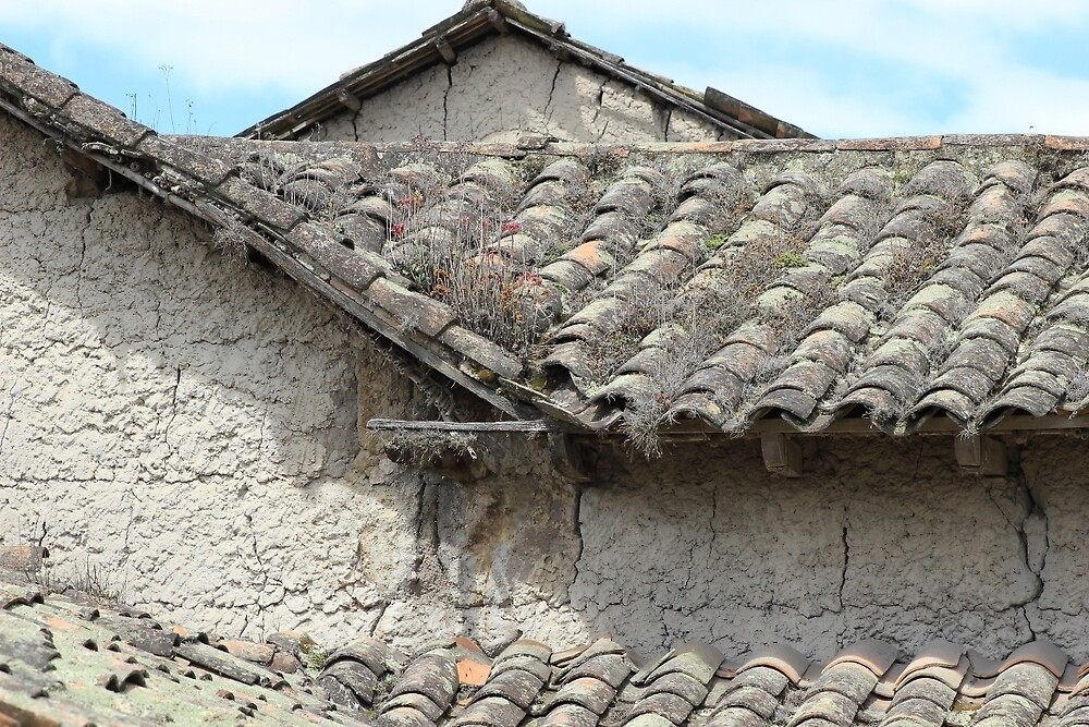 Adobe House With Overgrown Roof by rhamm