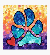 Puppy Love - Colorful Dog Paw Art By Sharon Cummings Photographic Print