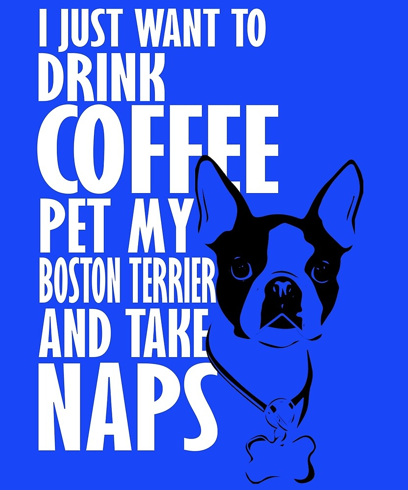Drink Coffee Pet Boston Terrier Take Naps by AlwaysAwesome