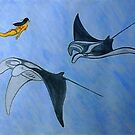 Freediving with Manta Ray by leororing