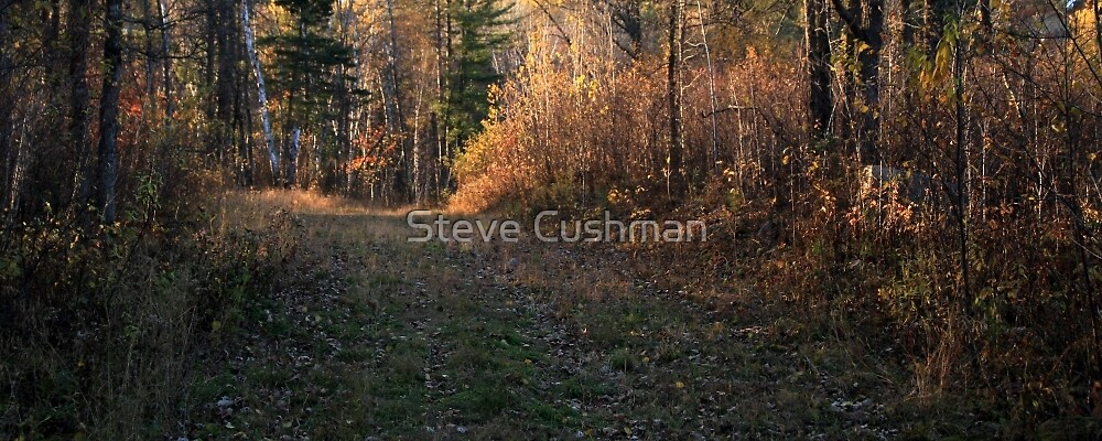 Minnesota Fall Hunting Trail by Cushman