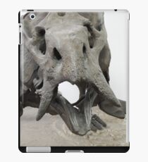 You're Old iPad Case/Skin