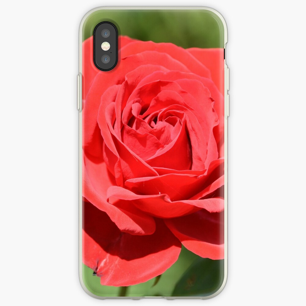 Red Rose iPhone Case & Cover