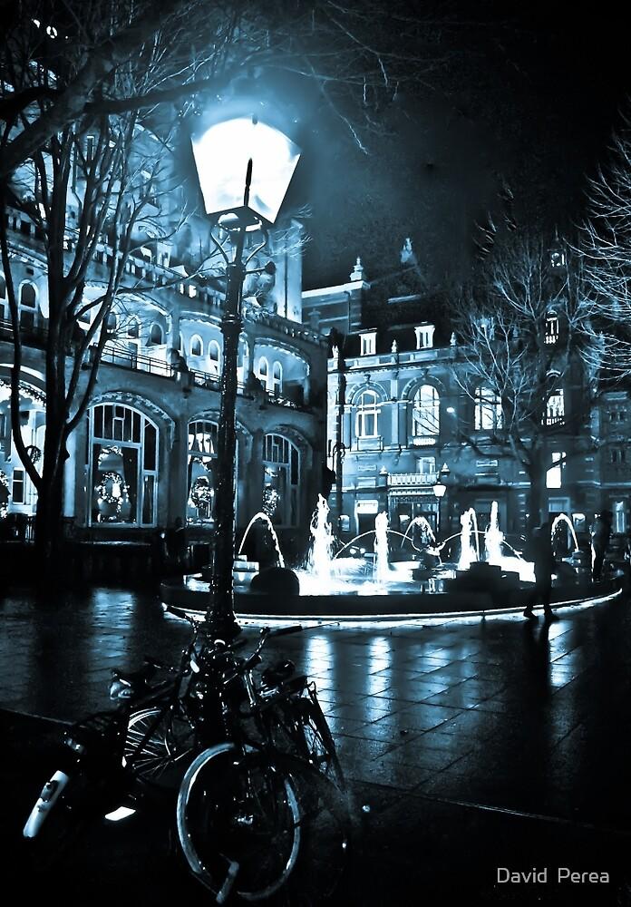 Winter midnight rain XXX Amsterdam by David  Perea