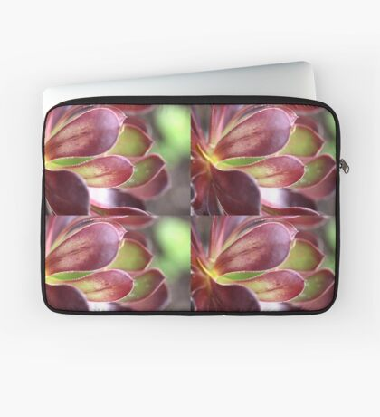 Purple Aeonium Laptop Sleeve