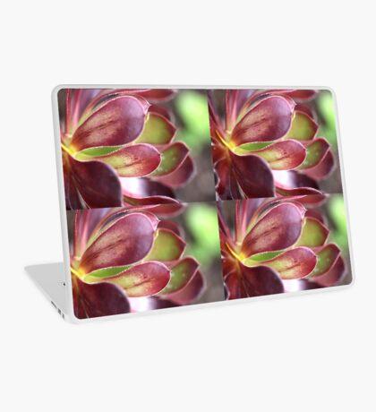 Purple Aeonium Laptop Skin