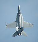 Zoom Climb - Hornet, Williamtown Airshow 2010 by muz2142