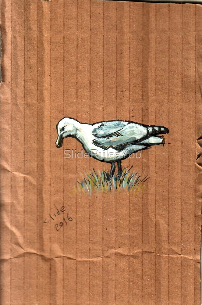 Gulls on Grass, #3 by SlideRulesYou