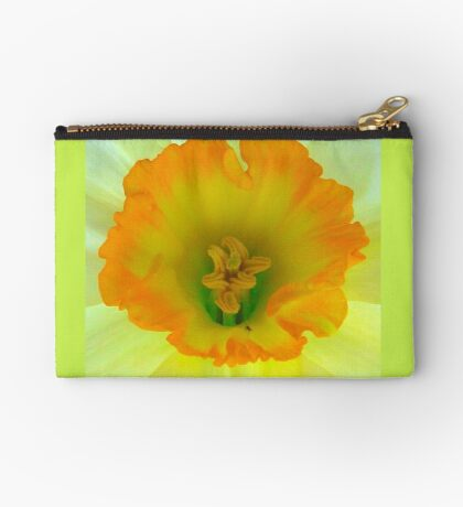 Daffodil close-up with visitor Studio Pouch