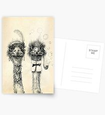 Mr. and Mrs. Ostrich Postcards