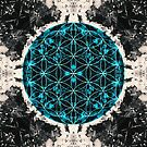 Flower of Life 4/16b by filippobassano