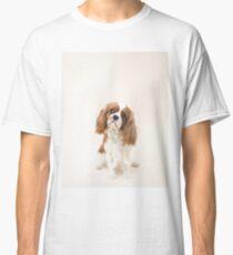 Cavalier King Charles Spaniel blenheim Classic T-Shirt