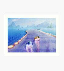 Seagul Fly  Art Print