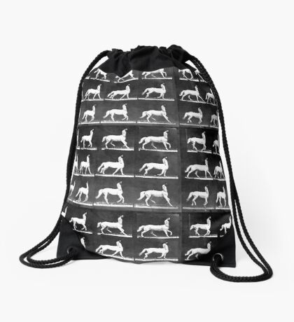 A Study of the Movement of Centaurs (Canter). Drawstring Bag