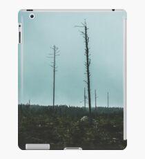 Desolate Trees iPad Case/Skin