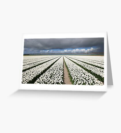 Tulips before the storm Greeting Card