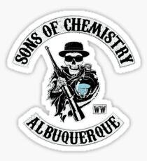 Sons of Chemistry Sticker