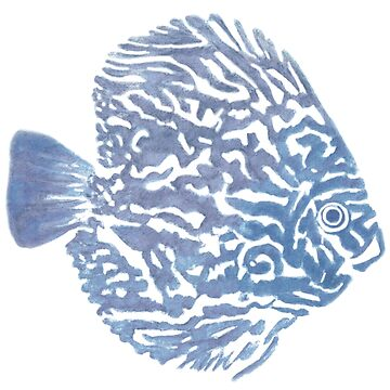 Discus fish by KKartist