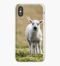 Donegal Lamb iPhone Case