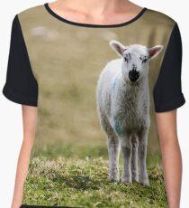 Donegal Lamb Women's Chiffon Top