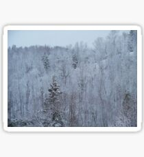 A snowy spring scene. Sticker