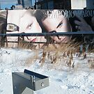 NY January High Line in Snow, New York's Elevated Garden and Walking Path by lenspiro