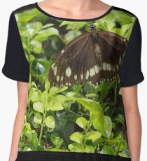 Butterfly on Hedge Chiffon Top