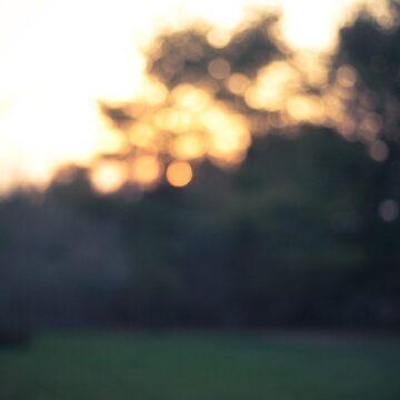 Summer Blur by jakerandell