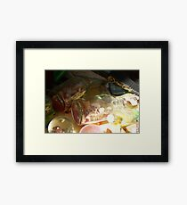 Bottled Beach Framed Print