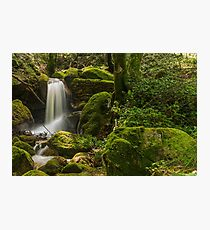 Sintra Waterfall Photographic Print