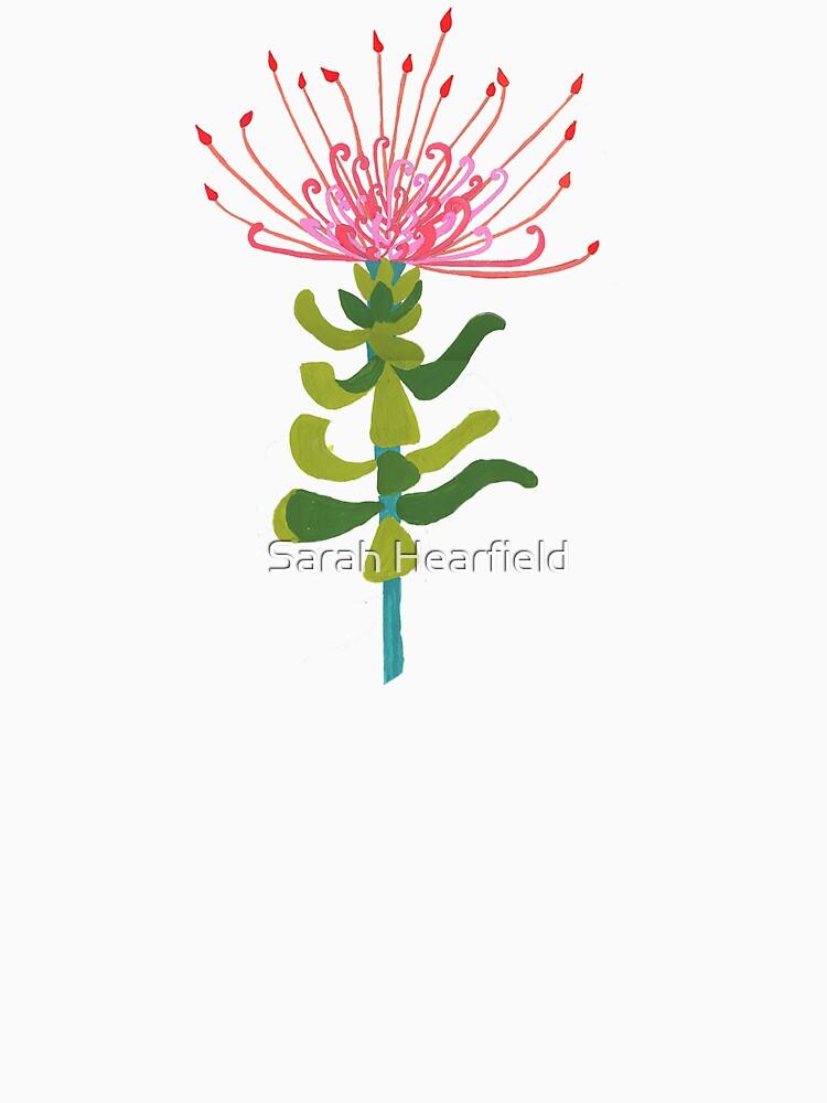 Pincushion Proteas by sarahrozdilski