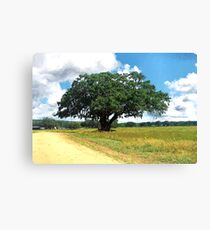 Painted Tree Canvas Print