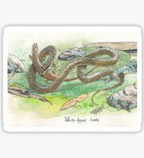white lipped snake Sticker