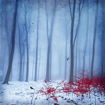 Cold Forest by DyrkWyst