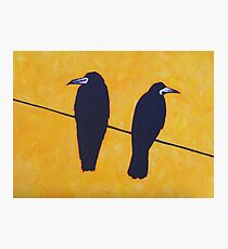 2 Rooks, 1 Wire Photographic Print