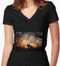 Enchanted sunset Women's Fitted V-Neck T-Shirt