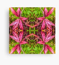 Hawaii Plant Series - Pink and Green Canvas Print