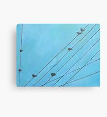 Birds, Wires 12 Canvas Print