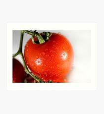Tomate Kunstdruck