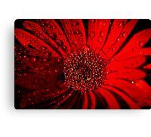 Red Raindrops Canvas Print