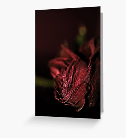 Dried Flowers Series -Red Rose- Greeting Card