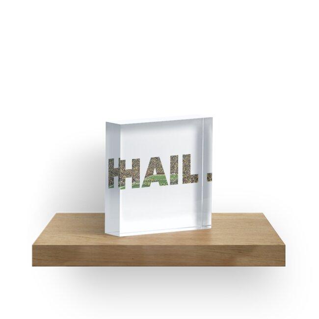 HAIL Michigan Football by Katie Beukema