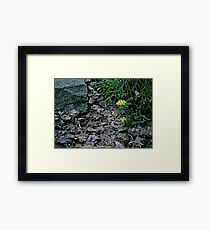 Brown Leaves and Yellow Daffodils Framed Print