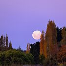 Autumn Moon - Southland New Zealand by AndreaEL