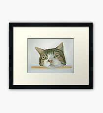 Look out spot Framed Print